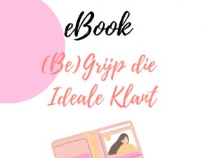 eBook Cover (Be)Grijp die Ideale Klant